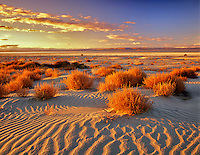 Sand dunes in Malheur National Wildlife Refuge with Harney Lake in background. Oregon.