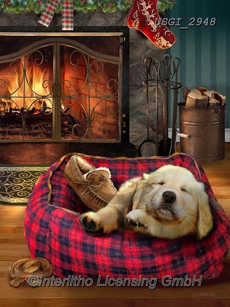 GIORDANO, CHRISTMAS ANIMALS, WEIHNACHTEN TIERE, NAVIDAD ANIMALES, paintings+++++,USGI2948,#xa# ,dog,dogs