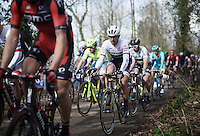 Fabian Cancellara (SUI/TREK Factory Racing) sends his bottle flying, closely followed by Peter Sagan (SVK/Tinkoff) with the finale of the race just ahead<br /> <br /> 78th Gent - Wevelgem in Flanders Fields (1.UWT)