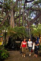 Tourists walk by lush foliage at the International Market Place in Waikiki.