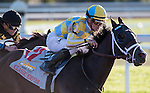 LEXINGTON, KY - OCT 07: Classic Empire, #11, ridden by Julien Leparoux and trained by Mark Casse wins the Claiborne Breeders Futurity Stakes at Keeneland Racetrack in Lexington, KY. (Photo by Samantha Bussanich/Eclipse Sportswire/Getty Images)