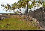 Great Wall, Hale o Keawe Heaiu, thatched Royal Mausoleum and Ki'i Guardians, Pu'uhonua o Honaunau, Place of Refuge, Pu'uhonua o Honaunau National Historical Park, South Kona Coast, Big Island of Hawaii