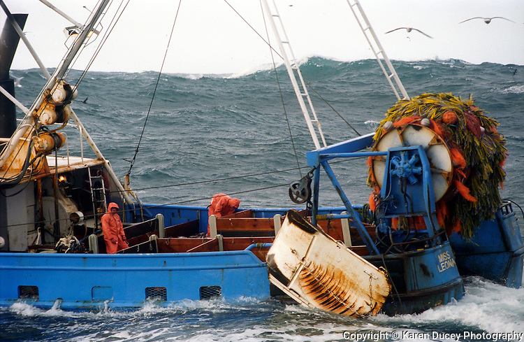 The F/V Miss Leona trawling for gray cod in the Bering Sea. (photo © Karen Ducey)