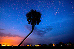 The Perseid meteor shower at Shell Point Beach in Wakulla, County south of Tallahassee, FL.