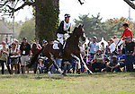Clarke Johnstone and Orient Express of New Zealand compete in the cross country phase of the FEI  World Eventing Championship at the Alltech World Equestrian Games in Lexington, Kentucky.