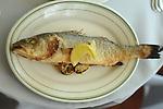 The whole Mediterranean sea bass for the Branzino al Forno at Sud Italia Ristorante at 2347 University Wednesday May 20, 2015.(Dave Rossman photo)