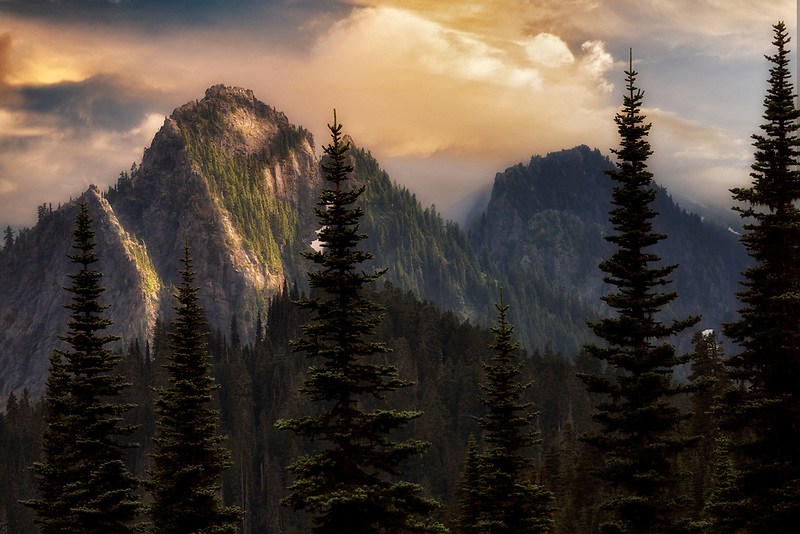 Tatoosh Mountaints and subalpine fir trees. Mt. Rainier National Park, Washington