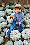 One orange pumkin, Avila Valley Barn, San Luis Obispo, California.(Evan)