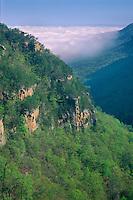 Cloudland Canyon<br /> Cloudland Canyon State Park<br /> Appalachian Mountains<br /> Georgia