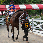 AUGUST 02, 2020:  Moretti #6, ridden by Javier Castellano, wins the Birdstone Stakes  at Saratoga Race Course in Saratoga Springs, New York. Rob Simmons/Eclipse Sportswire/CSM