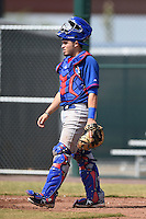 Chicago Cubs catcher Victor Caratini (7) during an Instructional League intersquad game on October 9, 2014 at Cubs Park Complex in Mesa, Arizona.  (Mike Janes/Four Seam Images)