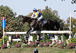 Viktoria Carlerback and Bally's Geronimo of Sweden compete in the cross country phase of the FEI  World Eventing Championship at the Alltech World Equestrian Games in Lexington, Kentucky.