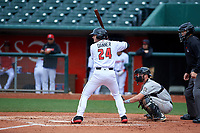 Lansing Lugnuts designated hitter Hagen Danner (24) during a Midwest League game against the Wisconsin Timber Rattlers at Cooley Law School Stadium on May 1, 2019 in Lansing, Michigan. Wisconsin defeated Lansing 8-3 after the game was suspended from the previous night. (Zachary Lucy/Four Seam Images)