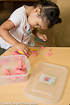 Education Preschool Two year old girl playing with play dough