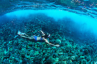 A young women snorkeling or freediving above a coral reef underwater at Molokini Crater, off the Island of Maui, Hawaii,  USA.