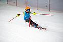The British Schools Indoor Open Ski Championships Manchester 3/06/2019
