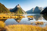 LOCATIONS | Photographs of New Zealand landscapes