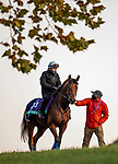 November 3, 2020: Lord North, trained by trainer John H.M. Gosden, exercises in preparation for the Breeders' Cup Turf at Keeneland Racetrack in Lexington, Kentucky on November 3, 2020. Alex Evers/Eclipse Sportswire/Breeders Cup