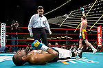 """""""Irish"""" prospect Andy Lee celebrates while former world champion Carl Daniels is knocked out on the canvas during their 6 rounds Super Middleweight fight at the Garden in New York on 03.16.07..Lee won by 3rd round ko. Photo by Thierry Gourjon."""