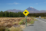 New Zealand, North Island, Ruapehu District, Tongariro National Park: Motorhome below Mount Ngauruhoe with Kiwi crossing sign | Neuseeland, Nordinsel, Tongariro National Park im Ruapehu District: Achtung Kiwis Kreuzen die Strasse, im Hintergrund ein Wohnmobil vor dem Mount Ngauruhoe
