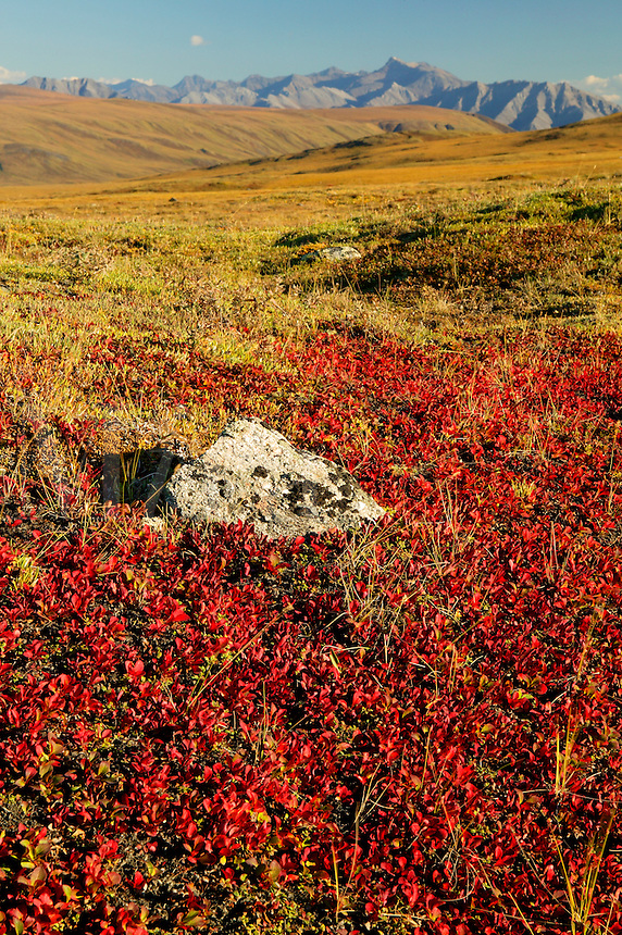 The Arctic National Wildlife Refuge and the Philip Smith Mountains of the Brooks Range, Alaska