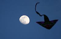 BOGOTA -COLOMBIA , 14- AGOSTO-2016. Cometas en el  parque Simón Bolivar   / Simon Bolivar kites in the park. Photo: VizzorImage / Felipe Caicedo / Staff
