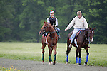 Animal Kingdom, winner of the 137th Kentucky Derby, heads to the training track at Fair Hill Training Center in Fair Hill, MD on May 14, 2011.  (Joan Fairman Kanes/EclipseSportswire)