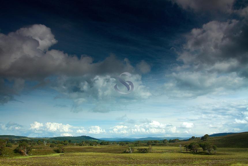 Abernethy National Nature Reserve, Cairngorm National Park, Badenoch & Speyside