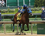 May 2 2015: Private Zone with Martin Pedroza win the 81st running of the Grade II Churchill Downs, 4-year olds going 7 furlongs at Churchill Downs.  Trainer Jorge Navarro. Owner Good Friends Stable LLC. Sue Kawczynski/ESW/CSM