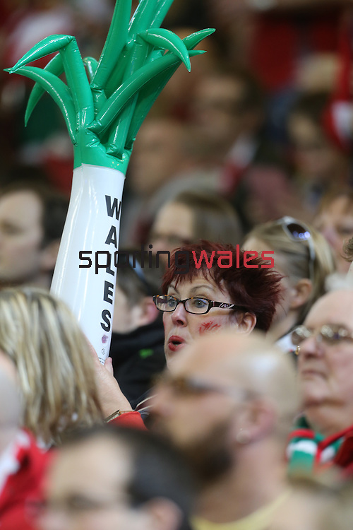 A patriotic Welsh rugby fan with her leek.<br /> RBS 6 Nations 2014<br /> Wales v Scotland<br /> Millennium Stadium<br /> <br /> 15.03.14<br /> <br /> ©Steve Pope-SPORTINGWALES