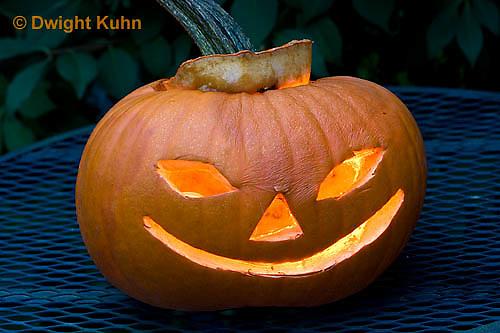 DC08-602z  Jack-o-Lantern Pumpkin with candle light, Halloween