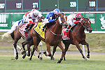 June 5, 2015: Waltzing Matilda (#4), Junior Alvarado up, wins the 72nd running of the Grade II  New York Stakes at Belmont Park, Elmont, NY. Joan Fairman Kanes/ESW/CSM
