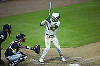 Jack Dragum (6) of the Charlotte 49ers at bat against the Appalachian State Mountaineers at Atrium Health Ballpark on March 23, 2021 in Kannapolis, North Carolina. (Brian Westerholt/Four Seam Images)
