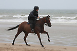 August 16, 2021, Deauville (France) - Horse from the Barrière Deauville Polo Cup training at the beach in Deauville. [Copyright (c) Sandra Scherning/Eclipse Sportswire)]