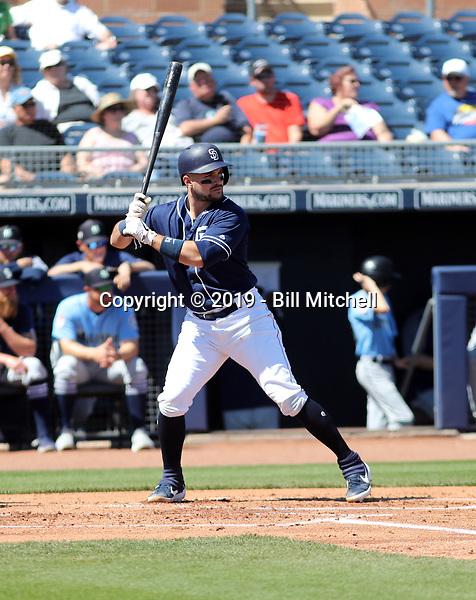 Luis Torrens - San Diego Padres 2019 spring training (Bill Mitchell)