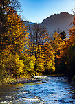 Deutschland, Bayern, Chiemgau, bei Ruhpolding: die Weisse Traun   Germany, Bavaria, Chiemgau, near Ruhpolding; river White Traun