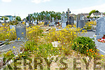 Rathass Graveyard overgrown with weeds