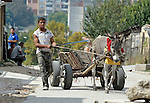 A man moves along a street with his donkey-drawn cart in a largely Roma, Turkish-speaking neighborhood of Dobrich, in the northeast of Bulgaria.