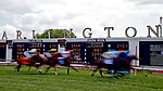 ARLINGTON HEIGHTS, IL - AUGUST 12:  Horses race in the fourth race of the day on Arlington Million Day at Arlington Park on August 12, 2017 in Arlington Heights, Illinois. (Photo by Jon Durr/Eclipse Sportswire/Getty Images)