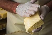 France, Calvados (14), Pays d' Auge, Saint-Philbert-des-Champs,  Fabrication du Pont-l'évêque AOP , chez Françoise et Jerôme Spruytte , salage du fromage // France, Calvados, Pays d' Auge, Saint Philbert des Champs, Pont l'Évêque cheese making , Françoise et Jerôme Spruytte, Pont l'Évêque cheese producers, salting cheese