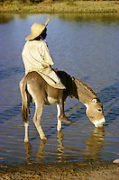 Boy on donkey drinking water in pool in Burkina Faso, Africa..