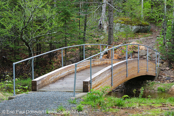 The Robertson bridge crosses the Saco River along the Webster Cliff Trail (Appalachian Trail) in the New Hampshire White Mountains. This bridge, built in 2008, is dedicated to the memory of Albert Robertson and his wife, Priscilla. Both volunteered their time to the AMC Four Thousand Footer Club, and Albert was one of the founding members.