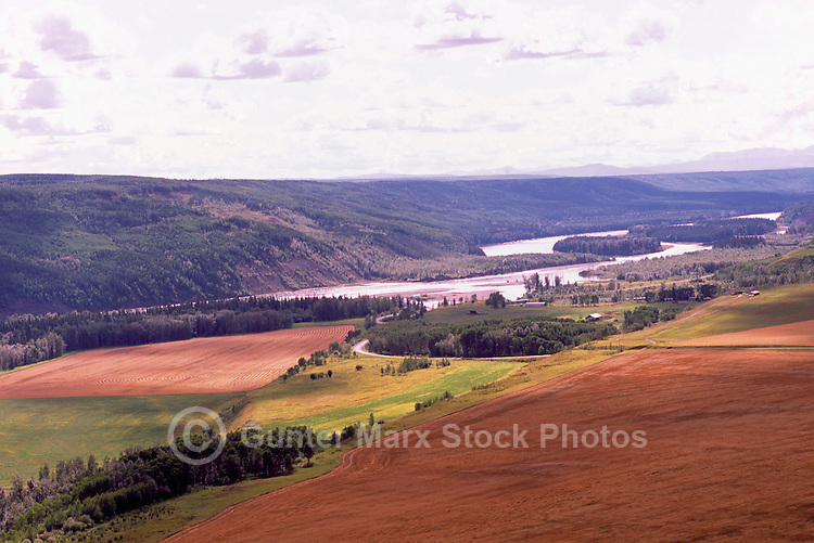 The Peace River and Grain Fields at Harvest Time, near Hudson's Hope, Northern British Columbia, Canada