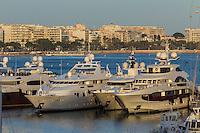Europe/France/Provence-Alpes-Côte d'Azur/Alpes-Maritimes/Cannes: les Yacht au Vieux Port et en fond La Croisette  // Europe, France, Provence-Alpes-Côte d'Azur, Alpes-Maritimes, Cannes:    the Yacht in  the Old Port and La Croisette background