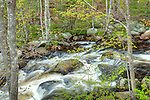 Card Mill Stream in Hancock County, ME, USA