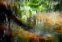 CAMBODIA 2007, PHNOM KOLEN