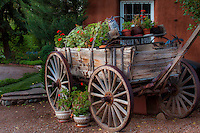 Rustic Conestoga wagon with potted plants in driveway of Elspeth Bobbs Garden