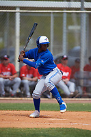 Toronto Blue Jays Peniel Brito (60) bats during an exhibition game against the Canada Junior National Team on March 8, 2020 at Baseball City in St. Petersburg, Florida.  (Mike Janes/Four Seam Images)