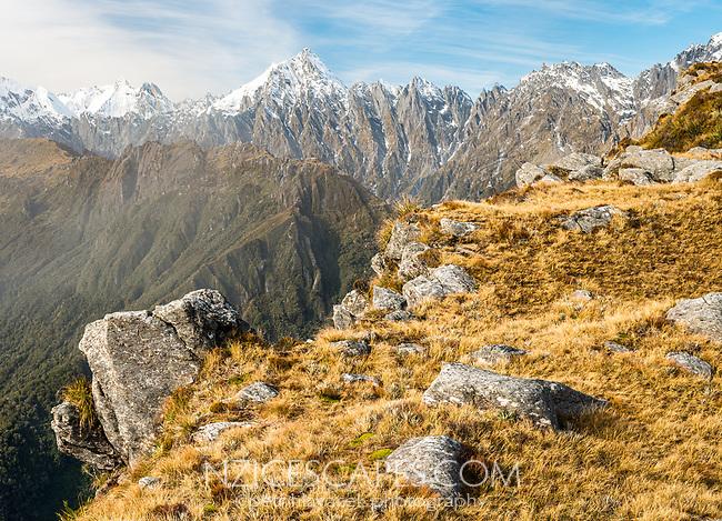 Misty alpine views of Mount Copland from rocky ridge, Westland Tai Poutini National Park, UNESCO World Heritage Area, West Coast, New Zealand, NZ