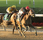 October 5, 2014:  Paulassilverlining with Jose Ortiz  win the Grade II Matron Stakes for 2-year olds fillies, going 6 furlongs at Belmont Park. Trainer: Michelle Nevin. Owner: Vincent S. Scuderi. Sue Kawczynski/ESW/CSM